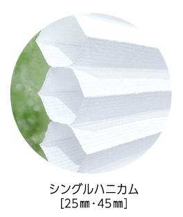 bouenn